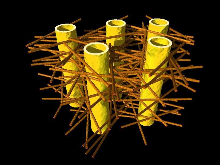 (legenda) A ilustração mostra a complexa bio estrutura da dentina: os túbulos dentários (os cilindros amarelos) estão envoltos em camadas de fibras de colágeno mineralizadas (varetas marrons). As minúsculas nanopartículas minerais estão inseridas na malha das fibras de colágeno e não podem ser visualizadas aqui.